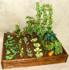 "Complete Summer Garden Size: 5"" x 7"", Cucumber vine, radish plants, beet plants, lettuce, carrots, butternut squash, zucchini squash, pepper plant, tomato plant and pole beans, all in dollhouse miniature scale, 1:12 scale by CDHM Artisan Abby Benner of Mini-Quest, www.cdhm.org/user/abby"
