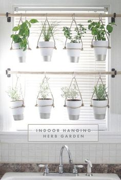DIY Indoor Hanging Herb Garden // Learn how to make an easy, budget-friendly hanging herb garden for your window. It will make your house prettier and fill your gardening void during winter months. #hanginggardens #hangingherbgardens #herbsgardening