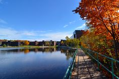 - Autumn at Nipissing University. This walkway beside the campus pond leads to over 20 km of hiking trails. - Most Beautiful University Campuses In Canada Business Grants, Student Travel, College Campus, Canada Travel, Hiking Trails, Holiday Travel, The Expanse