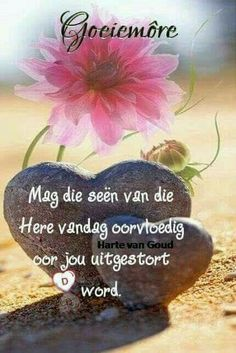 Good Morning Greetings, Good Morning Wishes, Day Wishes, Good Morning Quotes, Morning Inspirational Quotes, Inspirational Thoughts, Lekker Dag, Afrikaanse Quotes, Cute Good Morning