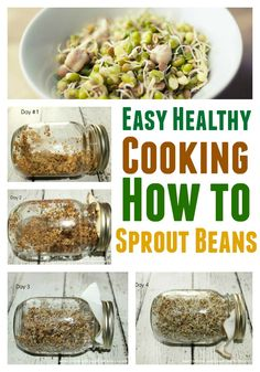 How to make a sprouting jar and sprout beans and seeds