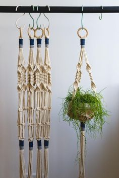 Macrame plant hanger in length with Blue and Gray details. Handmade macrame plant hanger made with twisted cotton rope. These macrame plant hangers give a Macrame Plant Hanger Patterns, Macrame Patterns, Macrame Hanging Planter, Hanging Plants, Macrame Design, Macrame Projects, Flower Pots, Diy And Crafts, Crochet