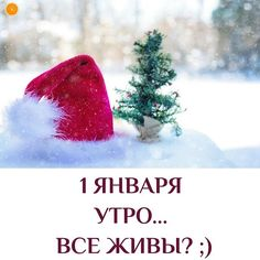 Santa Isn't the Magic of Christmas — SingleMomzRock Santa, Magic, Blog, Christmas, Xmas, Blogging, Navidad, Noel, Natal