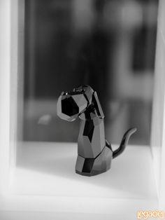 Black Crystal Dog
