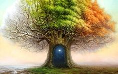 Tree of Time Tomasz Alen Kopera Movement surrealism Type oil on canvas Dimensions 101 x 76 [cm] / x Year : 2011 Kochi, Fine Art Gallery, Dementia, Tree Of Life, Oil On Canvas, Seasons, Magick, Wiccan, Witchcraft