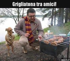 When your dog is a better Harry porter cosplayer than you haha. Harry Potter Tumblr, Harry Potter Anime, Harry Potter Memes, Funny Images, Funny Pictures, Comedy, Cursed Images, Dobby, Hogwarts