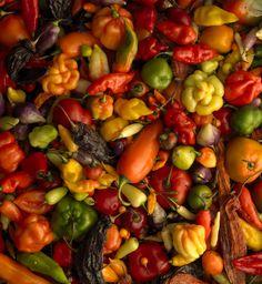 Aromas, colores y sabores de nuestra tierra que llenan de orgullo a todo peruano.