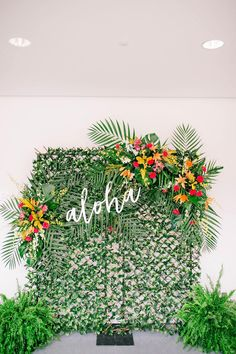 Aloha Wedding Photo Machine Tropical Wedding Ceremony Hawaiian Wedding C . - Aloha Wedding Photo Machine Tropical Wedding Ceremony Hawaiian Wedding C … – # - Aloha Party, Luau Theme Party, Hawaiian Luau Party, Hawaiian Birthday, Luau Birthday, Tiki Party, Beach Party, Hawaiin Party Ideas, Hawaiin Theme Party