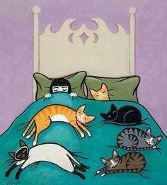Prrrrfect bed :D