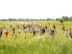 Scarecrow's field - field with fifty+ scarecrows by photosteve101.