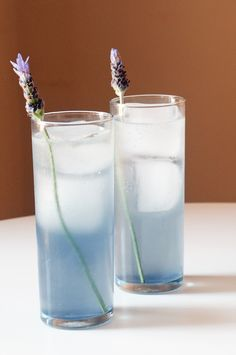 A Tom Collins gets a ladylike makeover with this lavender cocktail rendition.  [via yumsugar.com]