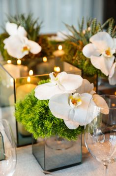Love one or two orchid blossoms in small vases, possibly w/ moss, succulent, or other simple greenery.