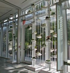 Danielle Trofe Design, Brooklyn Botanic Garden Installation, October 2013 – September 2014 Brooklyn, NY.