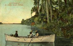 A Glimpse of St. Johns River, Florida.