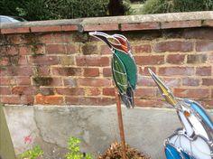 New little woodpecker!