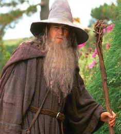 Gandalf/Mithrandir/Olórin - One of the Istari sent to protect Middle-earth. Even as the white wizard, he's still almost father-like to anyone under his care. Very intelligent, very kind.