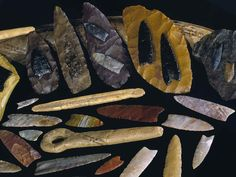 Clovis Artifacts From Five Mammoth Kill Sites Indian Artifacts, Native American Artifacts, Ancient Artifacts, Clovis Point, Prehistoric Age, Flint Knapping, Stone Age, Archaeology, Fossils