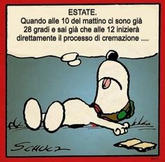 I Hate You, Love You, Complicated Relationship, Italian Summer, Snoopy Love, Cheer Up, Smiley, I Laughed, Mystery