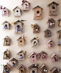 bird box collection