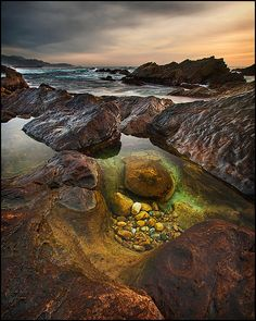 Explore a tidal pool All Nature, Amazing Nature, Beautiful World, Beautiful Places, Costa, Carmel By The Sea, Oh The Places You'll Go, Under The Sea, The Great Outdoors