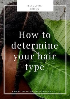 BlissfulCoils: How to determine your hair type Natural Hair Care, Natural Hair Styles, Curl Pattern, Hair Blog, Hair Type, Your Hair, Curls, Decoding, Posts