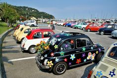 Little Fiat 500 and flowers