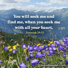 Jeremiah 29 13, Seek Me, Bible Scriptures, Word Of God, Christ, Words, Plants, Travel, Viajes