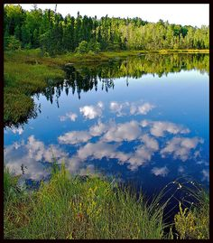 chequamegon national forest, northern wisconsin