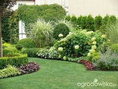 aim is to promote economic, community, and env. - garten pflanzen Our aim is to promote economic community and env Natural Garden, Lush Garden, Garden Cottage, Shade Garden, Small Yard Landscaping, Landscaping With Rocks, Inexpensive Landscaping, Landscaping Ideas, Modern Garden Design