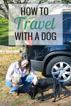 An Kety Pet Care. Training A Dog While Working A Full-Time Job. Many people appreciate and enjoy the company of animals, especially dogs. Just like children, puppies are hard to keep from causing trouble and being misch Baby Puppies, Dogs And Puppies, Doggies, New Puppy, Puppy Love, I Love Dogs, Cute Dogs, Dog Travel, Travel Tips