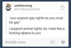 I support gay rights!