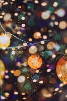 Christmas tree double exposure by Marcel for Stocksy United