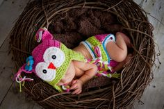 littlest owl, baby photography