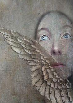 Wings of Desire   Sarah Jarrett