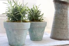 I don't know about you, but I'm not too keen on the orange sheen of new terracotta pots. However, they are much cheaper than the aged-look pots at the garden st… Vintage Planters, Diy Planters, Concrete Planters, Peel N Stick Wallpaper, Gaming Wall Art, Indoor Plant Pots, Indoor Garden, Hanging Succulents, Hanging Plants