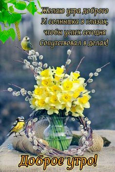 Доброе Утро, Цветочные Композиции, Шутки, Цветы, Растения
