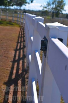 Along the Fence