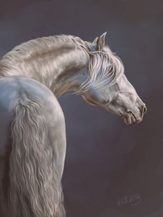 Beautiful white horse paintings - photo#5