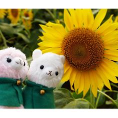日付超えちゃいましたが ずっと参加したかったので…! #Friday_flower_plushfes ---------------------太陽みたいに輝く君に。 You are shining like the sun #アルパカッソ #alpacasso #cute #alpaca#Alpacas#kawaii #ぬいどり #ぬい撮り #ぬいぐるみと撮り隊 #ぬいぐるみ撮り部 #ひまわり #sunflower #flower