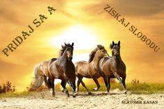 Pridaj sa a získaj slobodu: …http://spacespy-komunikacny-affiliate.webnode.sk/ Produktový, Informačný, Organizačný link: http://bit.ly/1xw2qKT