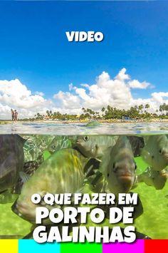 Confira o que fazer em Porto de Galinhas e um dos programas imperdíveis: o passeio de jangada até as piscinas naturais