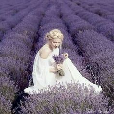 Lavender by Ana Rosa                                                                                                                                                                                 More