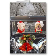 Christmas Labs in Car Cards