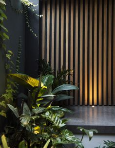 Landscape Uplighting Home ` Landscape Uplighting - Modern Timber Feature Wall, Feature Wall Design, Garden Privacy Screen, Outdoor Privacy, Timber Screens, Timber Walls, Outdoor Rooms, Outdoor Walls, Fence Design