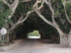 Banyan St. Boca Grande Florida