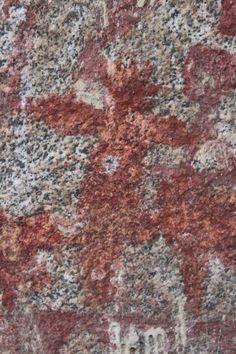 Seca revela fósseis de mais de 70 mil anos em Caruaru - Fotos - UOL Notícias