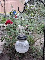 Old light globes with solar light kits in them