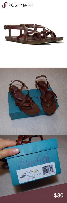 Blowfish granola strappy sandal whiskey brown 8 Sandals are in excellent condition. Size 8. Box is included. Only worn 4-5 times. Blowfish Shoes Sandals