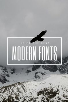 50 Modern Fonts to Use in Canva and Give Your Designs a Contemporary Feeling!