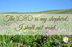 "~Encouragement for Today Devotions by Proverbs 31 Ministries~ ""The LORD is my shepherd; I shall not want."" Psalm 23:1"